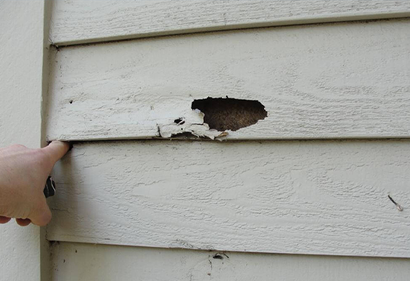 Rotten Wood Exterior Painting